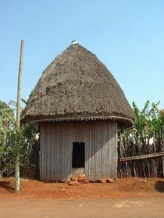 Traditional Hut: Cameroon