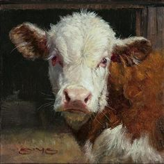 Curious Calf by William Suys Oil ~ 6 x 6 - Cow painting Cow Painting, Painting & Drawing, Paintings I Love, Animal Paintings, Hereford Cows, Cow Pictures, Painting Competition, Farm Art, Cute Cows