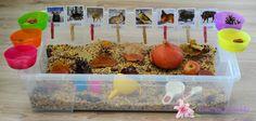 Jesienne pudełko sensoryczne - Liliowe Projekty Cake, Desserts, Diy, Food, Therapy, Tailgate Desserts, Deserts, Bricolage, Kuchen