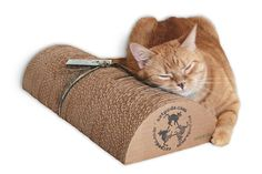 Hey, I found this really awesome Etsy listing at https://www.etsy.com/ca/listing/126167619/xl-kitty-speed-bump-18-eco-friendly