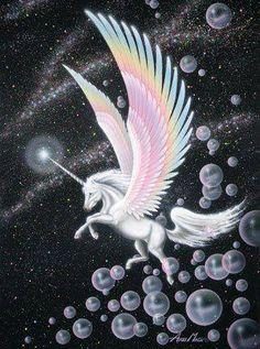 2015/08/19 Pegasus