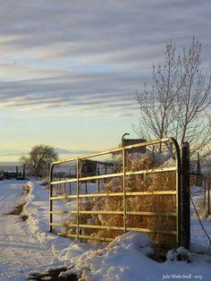 Oak City farm fence sunset lit fence