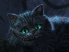 I got: Cheshire Cat! Which Alice In Wonderland Character Are You?