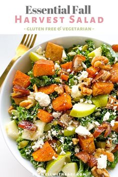 This healthy fall salad recipe is the simple, quick, easy, autumn, and perfect for crowds! It has all the fall essentials and is such a great option for lunch, dinner and even as a side dish for your holiday meal. I made it with the most delicious yogurt apple cider vinaigrette dressing. If you try this at home be sure to tag @eatwellwithsari on IG! #eatwellwithsari Fall Recipes, Healthy Recipes, Healthy Meals, Holiday Recipes, Salads For A Crowd, Simple Salads, Harvest Salad, Meal Prep For Beginners, Easy Healthy Breakfast