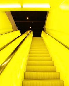 """4 Likes, 2 Comments - Beauty of Action (@beautyofaction) on Instagram: """"Neon stairs   by Jose Armenteros via #pinterest  #beautyofactionloves"""""""