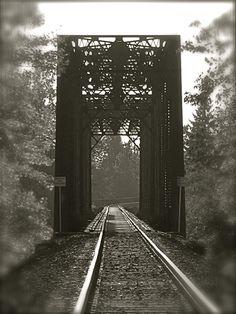 Train Trestle near Lebanon, Oregon.