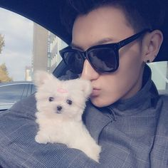 Find images and videos about cute, kpop and exo on We Heart It - the app to get lost in what you love. Tao Exo, Chanyeol, Hiphop, W Kdrama, Got7, Panda Bebe, Huang Zi Tao, Kung Fu Panda, Kris Wu
