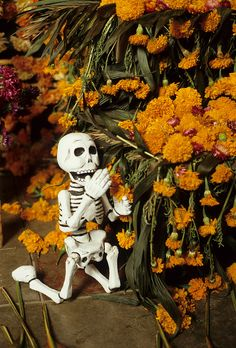 Golden marigolds surround a little praying skeleton. Patzcuaro, Michoacan Mexico.