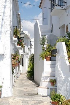 evysinspirations: Beautiful white streets of Frigiliana in Andalusia, Spain (by amorimur / Flickr)