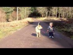 Klein kind laat de hond uit, maar vindt waterplassen ook erg interessant