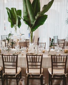 Itu0027s a good week We have two weddings up on @greenweddingshoes and tmrw is my birthday ?. Todayu0027s feature is Tropical La  banana leaves elephant ear ... & Elephant on Palm Frond - NO WHITE TENT Affordable Art ...