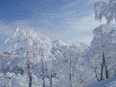 at Nekoma ski resort.