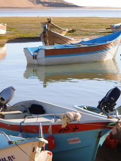 Boats in the lagoon of Moulay Bousselham, Morocco