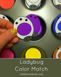 Ladybug color match for toddlers and preschool.