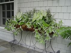 Garden | Deborah Silver and Co. ............ great for my back porch under the the boston fern.