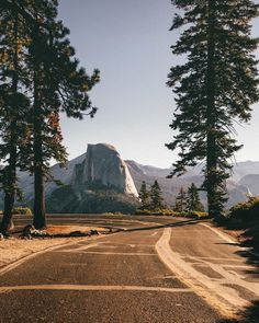 North America - Yosemite National Park, USA