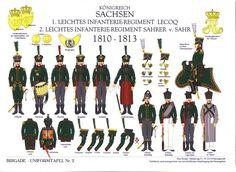 История (Наполеоновские войны, 1789-1815)