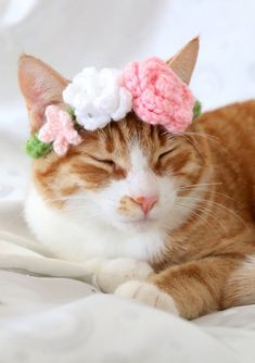 Flower Crown for Cats, Pet Wedding Photo Prop, Flower Collar for Cats and Small Dogs, Pet Flower Crown, Small Pink Flower Collar for Kitties Pretty Cats, Beautiful Cats, Crazy Cat Lady, Crazy Cats, I Love Cats, Cute Cats, Animal Gato, Cat Sweaters, Cat Hat