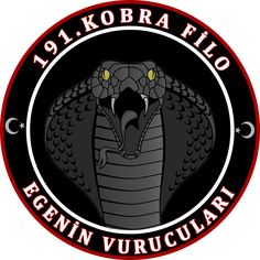 Turkish Air Force 191 Squadron