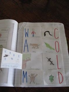 Warm and Cold Blooded Animals Foldable. Students draw pictures (underneath the flap) of how each of the animals respond when in warm or cold weather.  This foldable has so many possibilities!