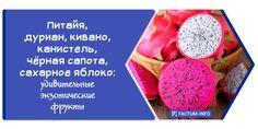 Эти удивительные тропические фрукты способны удивить не только своими необычными формами, но и специфическим запахом и пикантным вкусом... ➡ https://factum-info.net/fakty/eda/376-pitajya-durian-kivano-kanistel-chjornaya-sapota-sakharnoe-yabloko-udivitelnye-ekzoticheskie-frukty #фрукты #интересно #интересныефакты #факты #FactumInfo