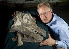 Abydosaurus Skull Fossil