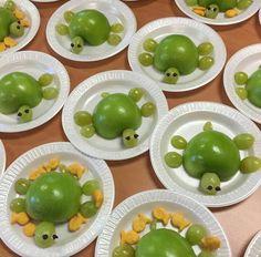 Turtle apple