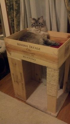 1 Bed Wine-Crate Cat Condo, with Cat Scratcher