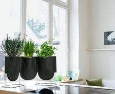 Quem gosta de cozinhar em casa sabe a delícia que é ter temperos frescos à mão. Pois esse prazer é possível mesmo em espaços compactos. Hort...