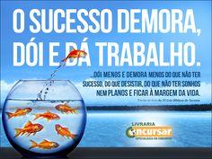 O SUCESSO DEMORA, DOÍ E DÁ TRABALHO. – livrariaconcursar.com.br