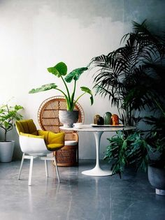 Design Dilemma Solved: 7 Ways to Add Visual Height to a Room | Apartment Therapy