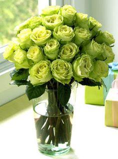 / green roses