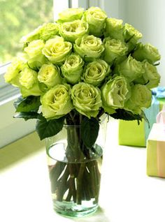 / green roses