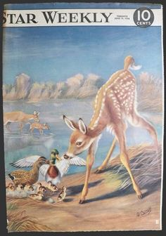 Deer & Ducks, June 19, 1948, Toronto Star Weekly