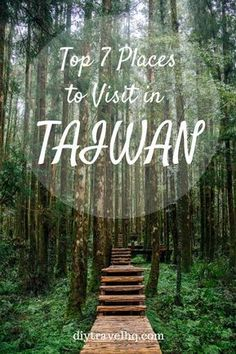 """Taiwan Itinerary: How to Visit 7 Cities in 2 Weeks Places to travel 2019 Discover Taiwan in-depth & independently with our ultimate Taiwan Itinerary – find out the top places to visit in the """"Heart of Asia. 7 Places, Cool Places To Visit, Places To Travel, Travel Destinations, Taiwan Travel, Asia Travel, Beach Travel, Laos Travel, Travel Guides"""