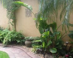 Tropical Landscape Design, Pictures, Remodel, Decor and Ideas - page 5 ~ front courtyard
