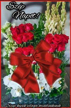 Beautiful Birds, Christmas Wreaths, Humor, Holiday Decor, Home Decor, Figurative, Decoration Home, Room Decor, Humour