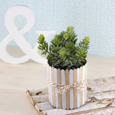 DIY planter with ice chopsticks - creative love Diy Craft Projects, Diy Crafts For Home Decor, Diy Arts And Crafts, Jar Crafts, Popsicle Stick Crafts, Craft Stick Crafts, Diy Gift Wrapping Tutorial, Pottery Painting Designs, Paper Crafts Origami