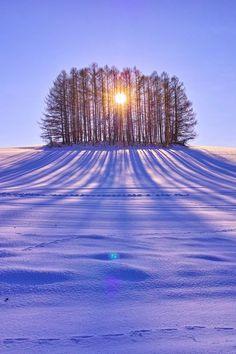 Gorgeous sunrise at Biei, Hokkaido, Japan