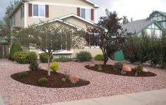 colorado xeriscape: good mix of rock and mulch Rock Yard, Drought Resistant Landscaping, Drought Tolerant Landscape, Front Yard Decor, Small Front Yard Landscaping, Colorado Landscaping, Home Landscaping, Colorado Springs, Lawn And Garden