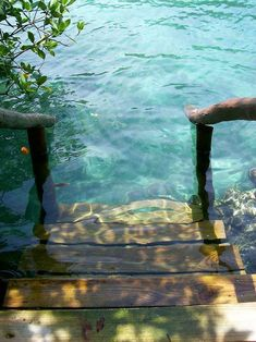 I love creative designs and unusual ideas Steps to the sea, Rivera Maya, Mexico