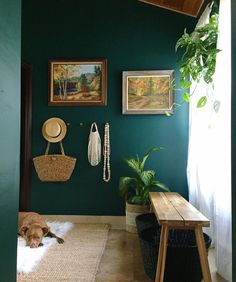 Deep teal green walls and warm, natural textures