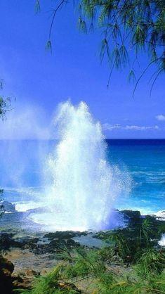 Kauai Beach, #Hawaii