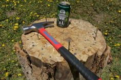 Stump: The Ultimate Drinking Game
