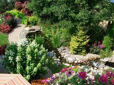 Gartenteich im Hinterhof anlegen