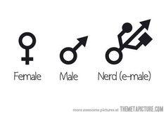 Male/Female/Nerd