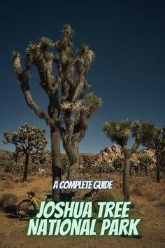 Here is a complete guide to Joshua Tree National Park. Joshua tree camping l Joshua tree park l Joshua tree national l camping Joshua tree l Joshua tree national park photography #JoshuaTreeNationalPark #USAnationalparks #nationalparks #Joshuatreecamping Best National Parks Usa, National Park Camping, Joshua Tree National Park, Joshua Tree Camping, State Parks, Park Photography, Vacation, Vacations
