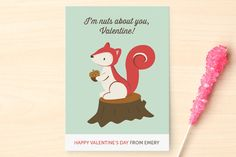 Nuts Classroom Valentine's Cards by peetie design at minted.com #Minted #Valentines
