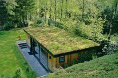 Un toit végétalisé est une bonne isolation pour la maison                                                                                                                                                      Plus