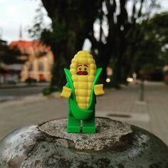 Me puedes tomar una foto? Can you take me a picture? I'm Mr. Corn  ---------------------------------------------------- #lego #legocity #minifigures #jcaventuras #city #legostagram #legomania #legophotography  #legophotos #legofunny #toyphotography #Martes #Tuesday #Dienstag #mardi #martedì #화요일 #火曜日